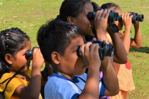 amazon binocular project